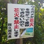 鹿児島・阿久根漁港から魚が届きます