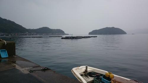 漁港からスタート