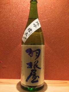 富山県 富美菊酒造 羽根屋 限定純吟 煌火 生原酒 すべての酒を大吟醸と同じ手間暇で醸す蔵のうたい文句とおり丁寧な味わいです 半合440円/一合750円