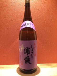 浦霞 純米しぼりたて この時期にしか呑めないお酒です、 お酒にも旬があるのですよね!!! 半号400円/一合750円