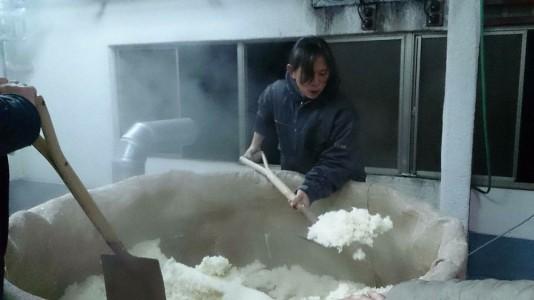 蒸米をショベルで掻き出す、隠我調理スタッフ小林さん
