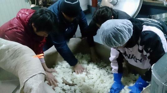 乾かした掛け米をほぐすスタッフと蔵人