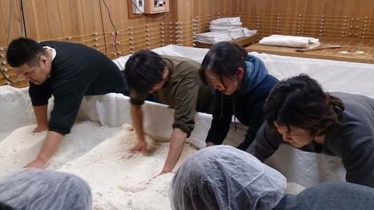 社長と麹米をほぐすスタッフと蔵人