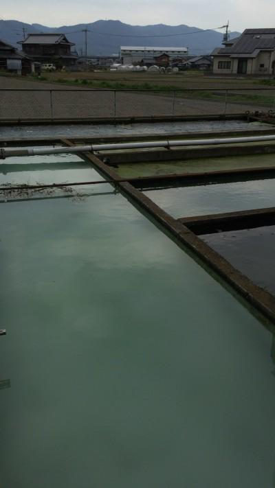 こちらは浄水用の場所、表に作っているのは役所へのアピールもあるそうです。