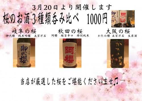 桜酒呑み比べ本番