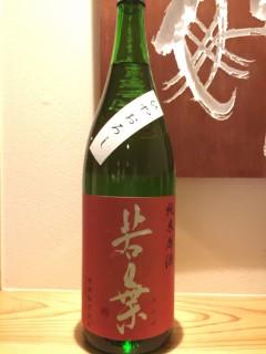 岐阜県 若葉株式会社 若葉 純米原酒ひやおろし  半合¥500/一合¥800